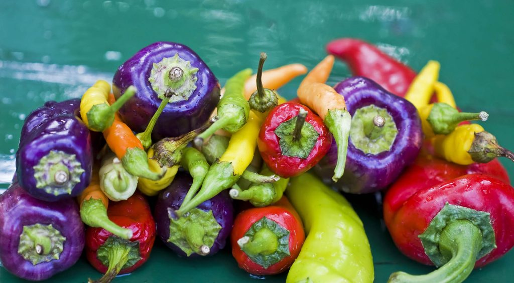 What Type of Peppers Should I Use for My Hot Sauce