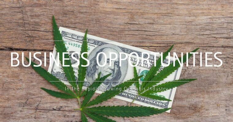 Business Opportunities In The Rapidly Growing Cannabis Industry