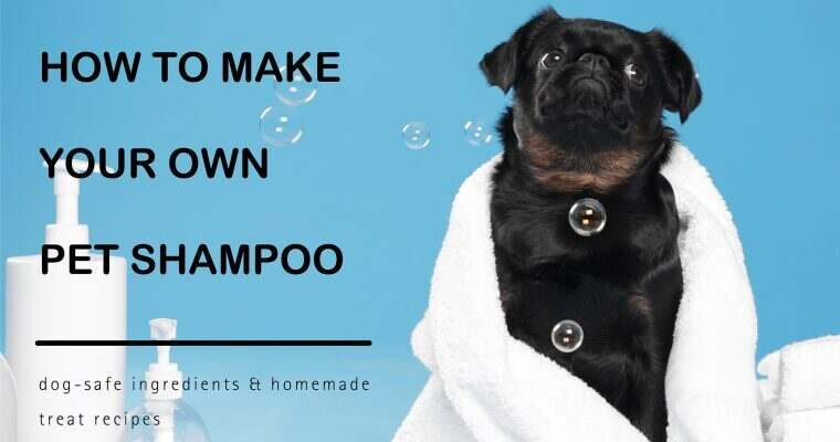 How To Make Your Own Pet Shampoo